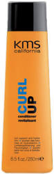 Curl Up Conditioner Revitalisant