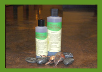 Herbal Hair Therapy Shampoo - System II