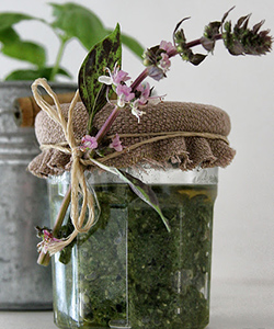 3 DIY Herbal Hair Tonics for Spring
