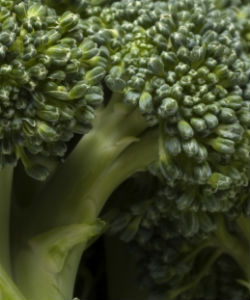 4 Ways Broccoli Will Help Your Curly Hair Journey