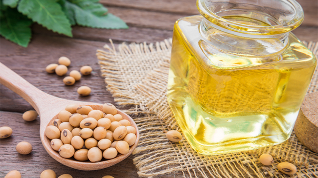 Herbal Oil: Soybean Oil Benefits and Uses